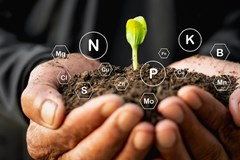 Hands cupping dirt and a seedling surrounded by chemical elements representing macro and micro nutrients.