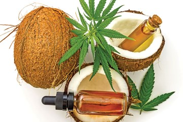 Coconut Oil and Cannabis: A Perfect Pairing