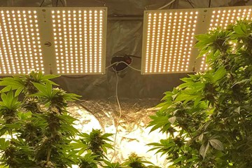 Find the Right LED Lights With the Watts Per Square Foot Principle