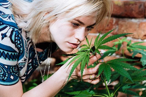 While Heidi has had migraines for a good portion of her life, she just recently started using and growing her own cannabis for pain relief.
