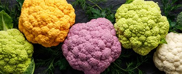 Cauliflower plants of different colors.