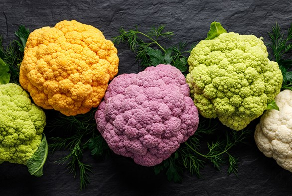 Can I Grow Cauliflower Hydroponically?