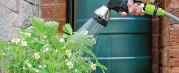 Hand watering garden with hose