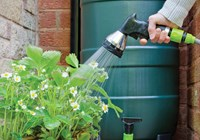 7 Ideas to Create an Eco-Friendly Garden