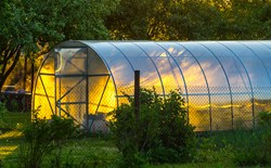 Greenhouse at sunset