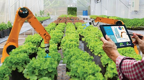 As the role of controlled environment growing increases in agriculture, so does the opportunity for artificial intelligence. But can AI...