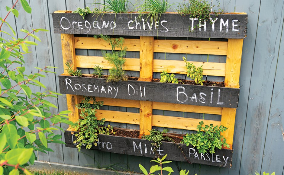 Pallet planter filled with herbs handing on a wall
