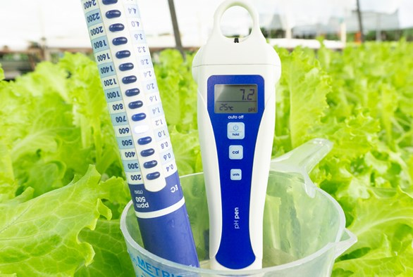 How to Make the Perfect Hydroponic Nutrient Solution