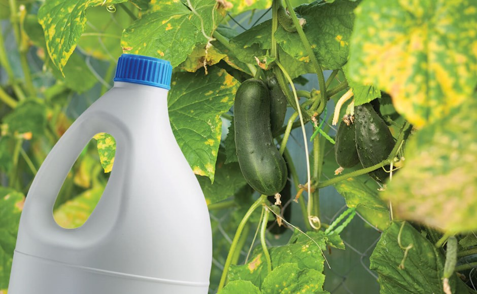 Hypochlorite in Horticulture