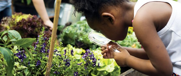 Young girl examining plants in a raised garden bed through a magnifying glass.