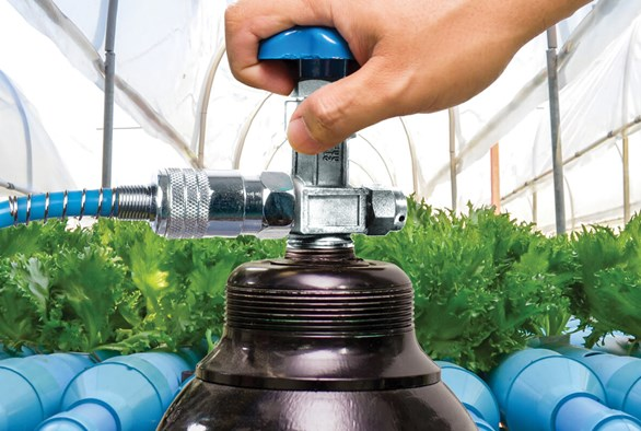 CO2 Enrichment, Acclimation, and Efficiency in Hydroponic Growing