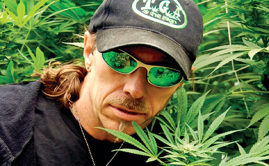 Photograph of Subcool posing in front of a cannabis grow.