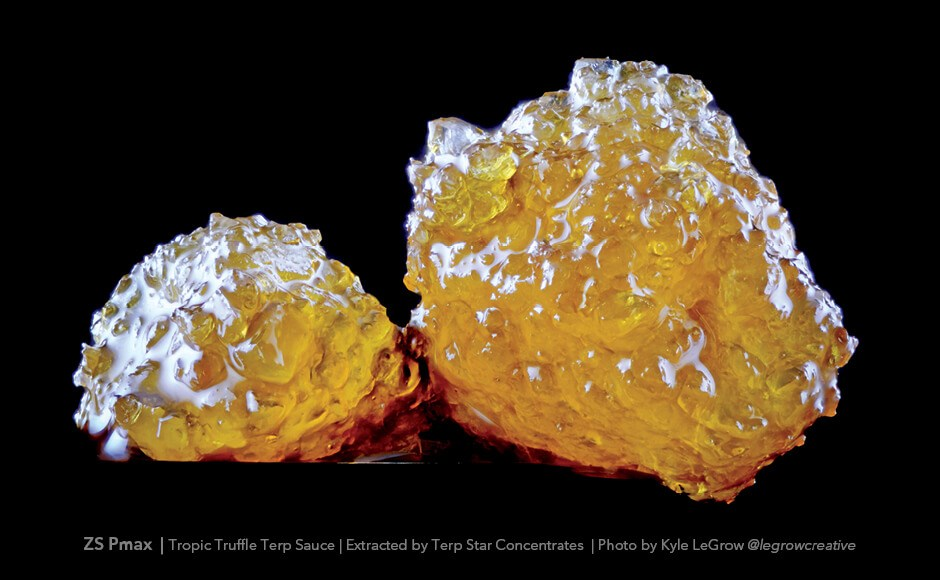 Terpene Sauce: An Elite Concentrate