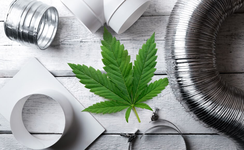 Cannabis leaf on a table with ventilation equipment.