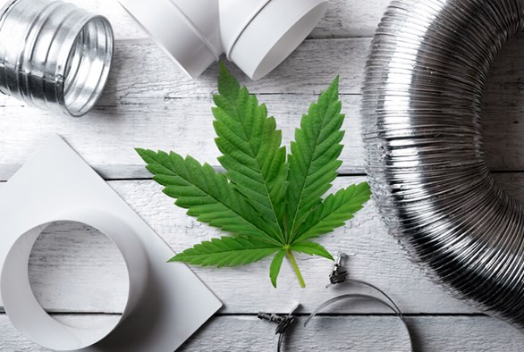 How To Perfect Your Grow Room's Ventilation System