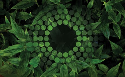 Green Means Grow: How Green Light Affects Plant Growth