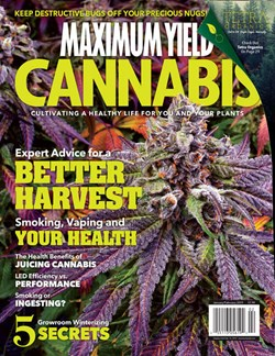 Maximum Yield Cannabis Canadian Edition Jan/Feb 2018