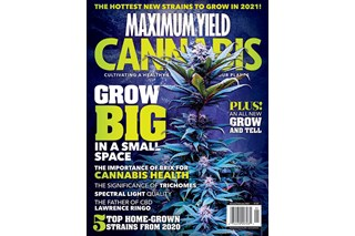 Maximum Yield Cannabis USA Edition Issue #1 2021