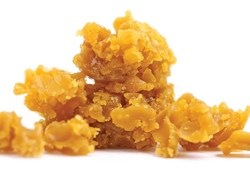 Solvent-Free-Extracts-Concentrates