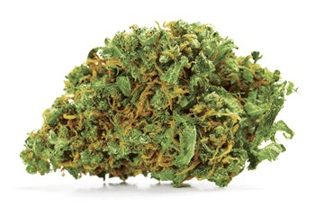 Cut & Dried Strain Review: Cannatonic