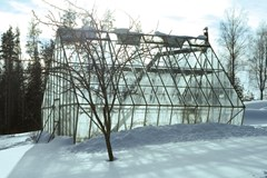 The Basics of Wintertime Greenhouse Gardening