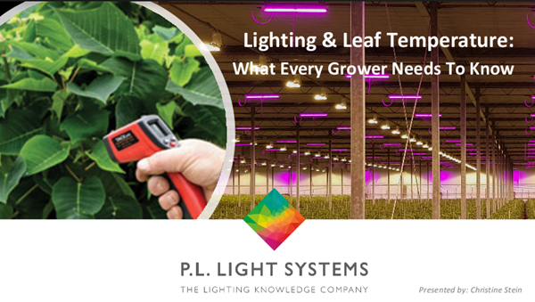 Image for How LED and HPS Lighting can affect Air and Leaf Temperature