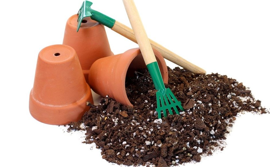 Mud Pies and Hair Hygrometers: DIY Projects for Indoor Gardening