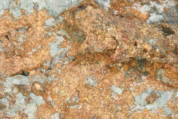 The Effects of Cobalt, Copper, and Chromium in the Garden