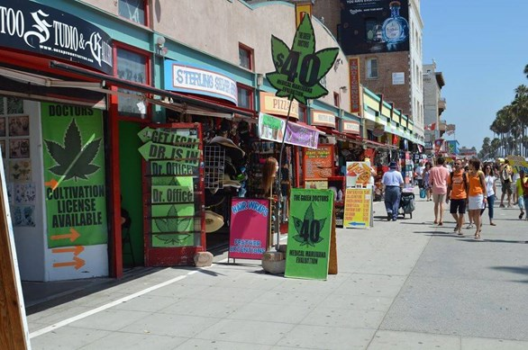 Weed Traveler: Exploring Venice Beach