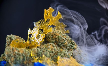 What You Need to Know About Cannabis Extraction Methods