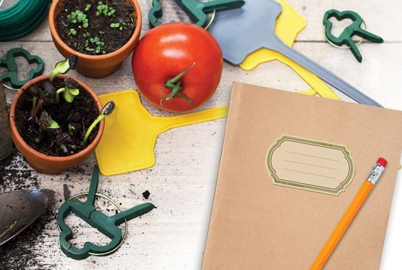 The Write Way: What to Keep Track of in a Gardening Journal
