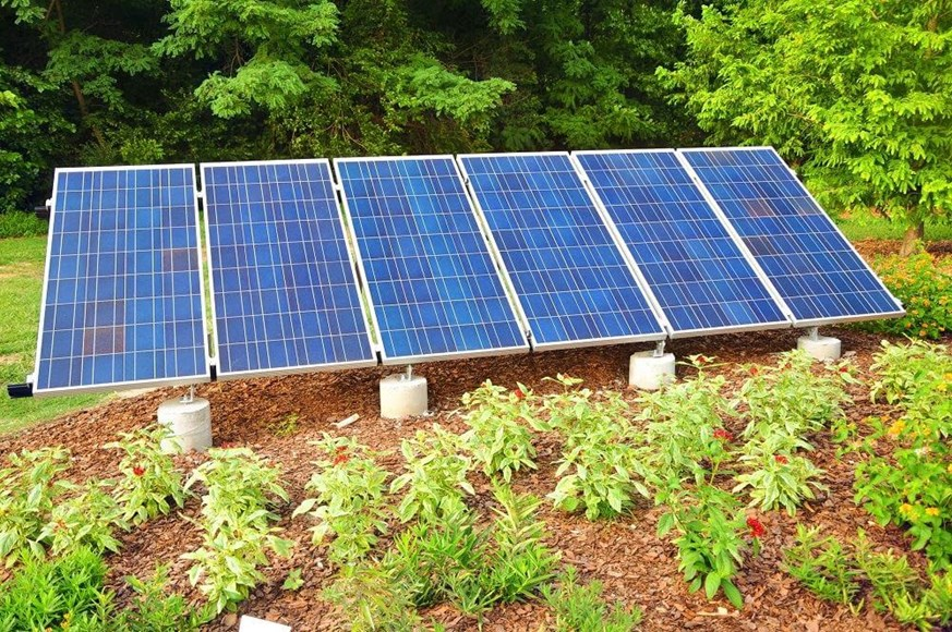 How to Use Solar Energy to Power Your Garden