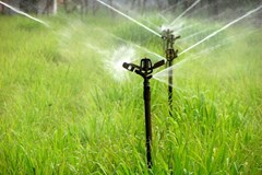 Preventing the Negative Effect of Water Salinity on Soil