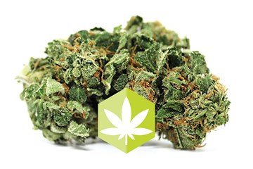 Sunset: Cut and Dried Strain Review of a Sleep Inducer