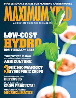 Maximum Yield USA Issue #6 2019