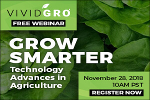 Grow Smarter: Technology Advances in Agriculture