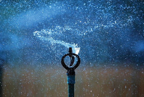 The Benefits of Using an Irrigation System in Your Garden