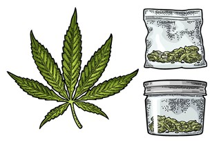 Oven Bags for Storing Cannabis?! (They Work)