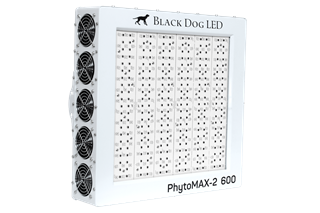 Black Dog LED PhytoMAX-2 600